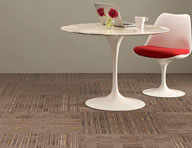 Evolve Carpet Tile