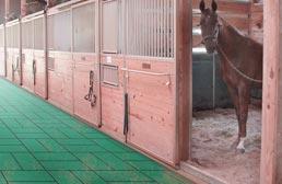 """1"""" Horse Stall Tiles"""