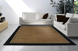 Catalina Black Border Area Rug