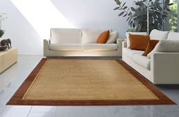 Catalina Brown Border Area Rug