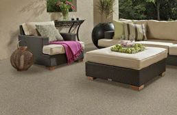 Shaw Natural Path Outdoor Carpet