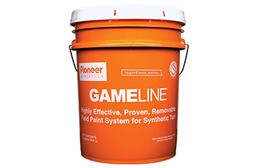 GameLine Removable Paint