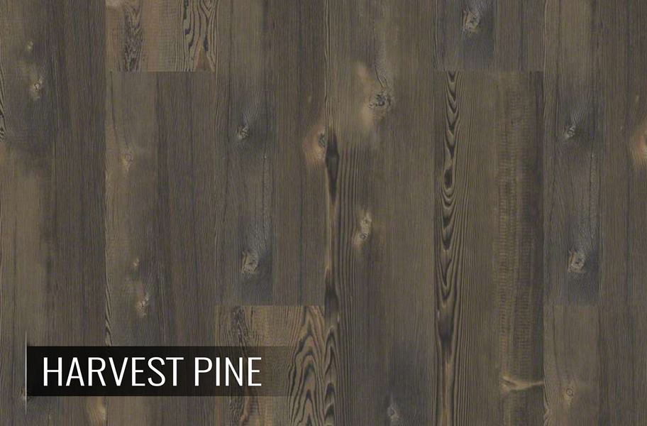 Shaw Blue Ridge Pine Natural Pine Rigidcore Planks