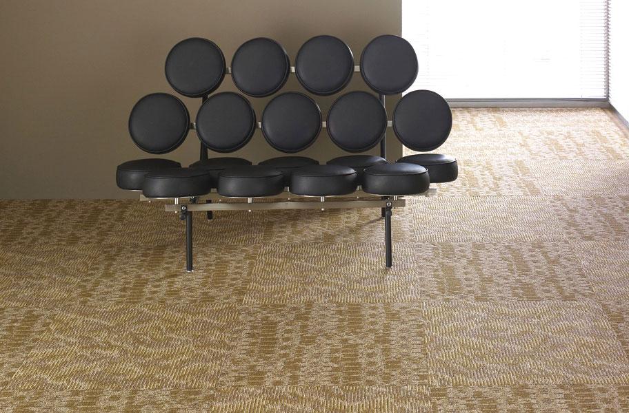 residential carpet tiles. Shaw Chain Reaction Residential Carpet Tiles