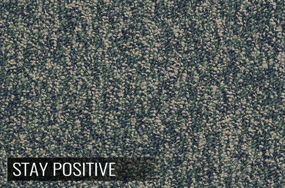 Shaw Sound Advice Carpet Tile
