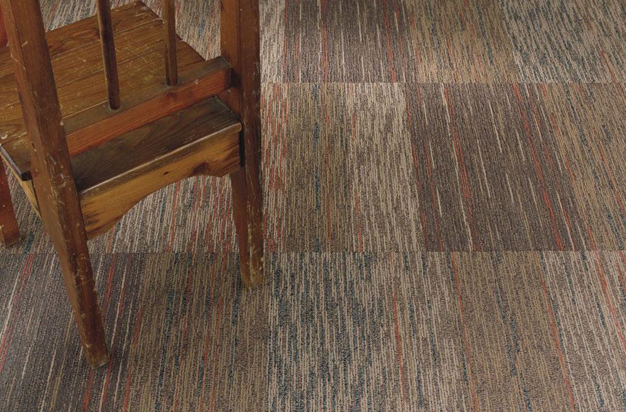 Shaw Broadloom Carpet Maintenance Oropendolaperuorg