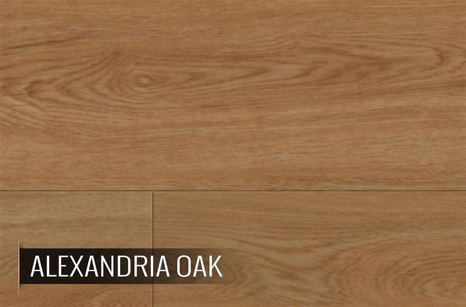 Coretec Plus Xl Planks 9 Quot X 72 Quot Wpc Luxury Vinyl Plank