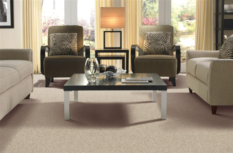 Mohawk Charming Details Carpet Comfortable Residential