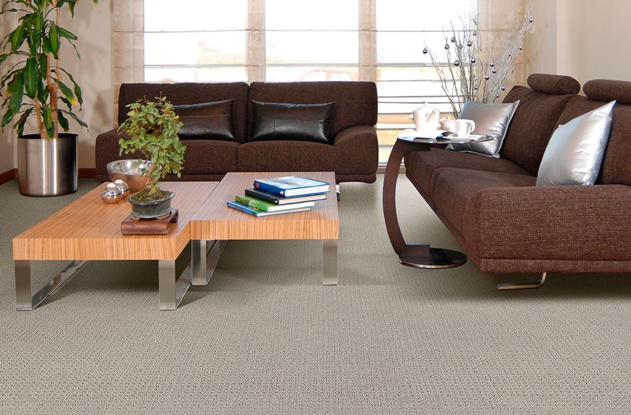 Beaulieu Concerto Carpet Patterned Residential Carpet