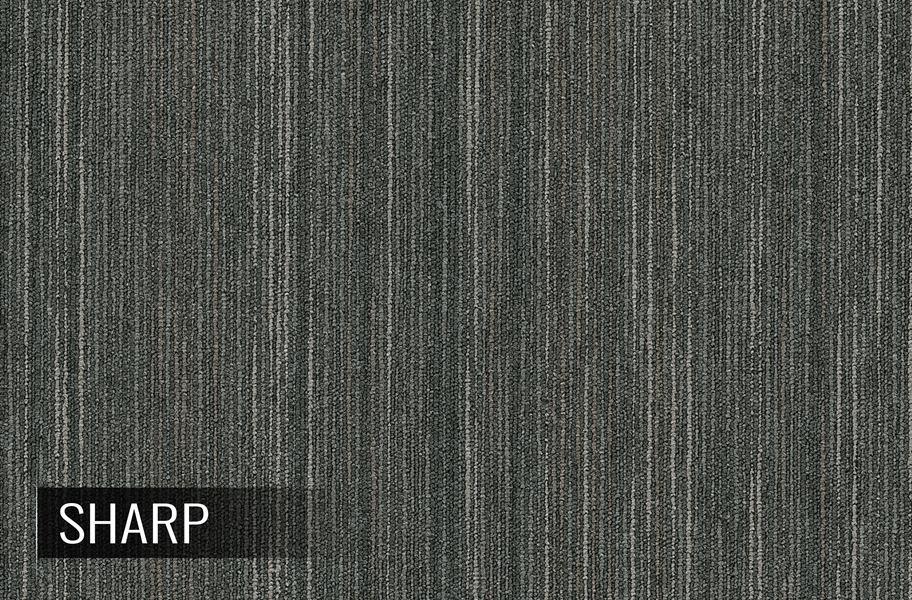 Shaw Intellect Carpet Tiles Commercial Grade Carpet