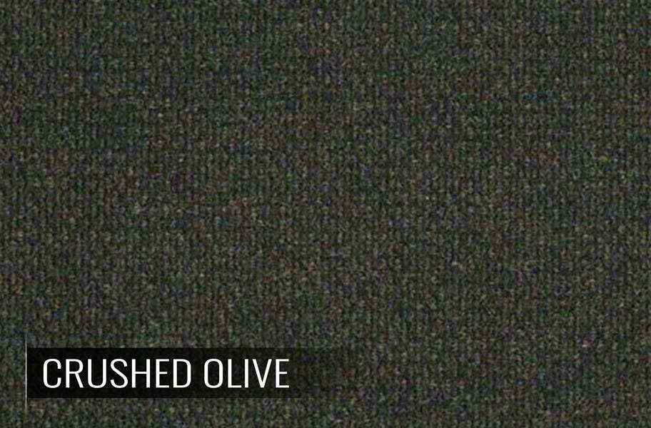 Shaw carpet cri green label plus carpet vidalondon for Green label carpet