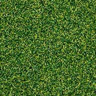 Lime/Field Green Premium Putting Green Turf Rolls