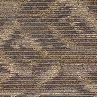 Architectural ElementSpirited Moment Carpet Tile