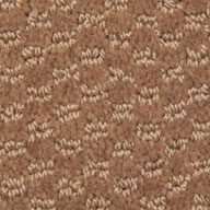 Mohawk Dynamo Carpet Patterned Residential Carpet