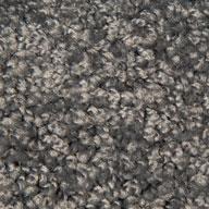 Mohawk Ideal Match Carpet Stain Soil Pet Urine Resistant