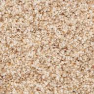 Classy Phenix Canal Street Carpet