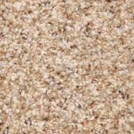 Belle Phenix Canal Street Carpet