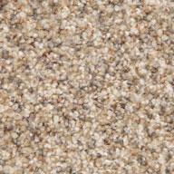 Barley Phenix Canal Street Carpet