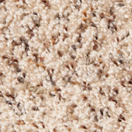 Turner Field Phenix Extra Innings Carpet