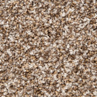 Tweed Coat Phenix Lakefront Carpet