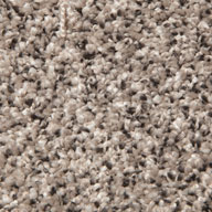 Winter WindPhenix Lakefront Carpet