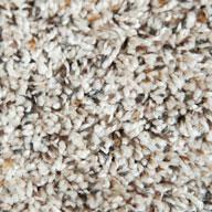 Wild Oats Phenix Little River Carpet