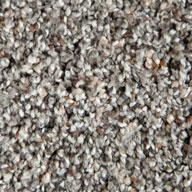 Lazy Creek Phenix Little River Carpet
