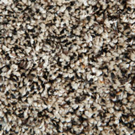 Stone Hearth Phenix Little River Carpet