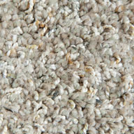 Odessa Phenix Rhapsody Carpet