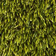 Olive Green Perfect Green Turf Rolls