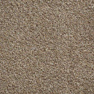 Sandstone Cabana Turf Rolls