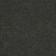Crushed OliveShaw Succession II Outdoor Carpet