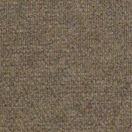 Sierra SandShaw Succession II Outdoor Carpet