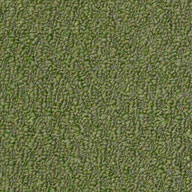 Holly LeafShaw Gardenscape Outdoor Carpet
