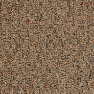 Rustic CopperShaw Gardenscape Outdoor Carpet