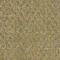 Wheat GrassShaw Gardenscape Outdoor Carpet