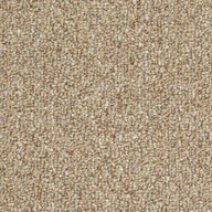 Tree HouseShaw Natural Path Outdoor Carpet