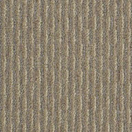 Bayou Beige Shaw Pattern Play Outdoor Carpet