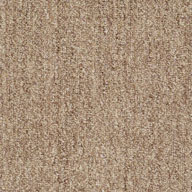 Classic Tan Shaw Have Fun Waterproof Carpet