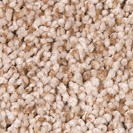 Oasis Sand Air.o Fresh Start I Carpet with Pad