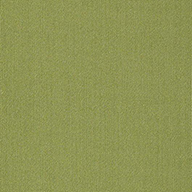 Brite GreenShaw Color Accents Carpet Tile