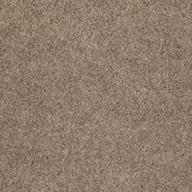TaupeLakeshore Indoor Outdoor Carpet