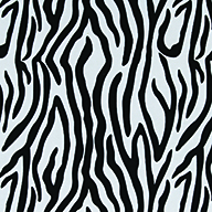 ZebraZebra Indoor Outdoor Rug