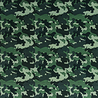 GreenCamo Indoor Outdoor Rug