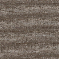 Sustainable Shaw Engrain Carpet
