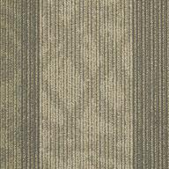 Receiver Shaw Feedback Carpet Tile
