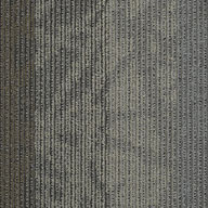 Velocity Shaw Feedback Carpet Tile