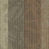 Radar Shaw Feedback Carpet Tile