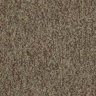 AchievementShaw No Limits Carpet Tile