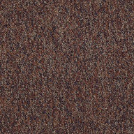 DynamicShaw No Limits Carpet Tile